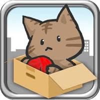 catshot_R