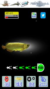 人面魚10