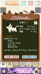 くっつき猫カフェ11