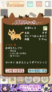 くっつき猫カフェ12