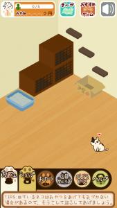 くっつき猫カフェ6
