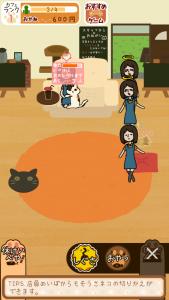 くっつき猫カフェ5