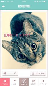 キュンくる_15