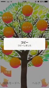 コピーの実_5