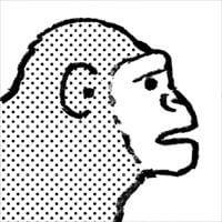 進化論_R