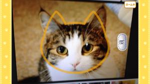 猫耳さばいばー_7