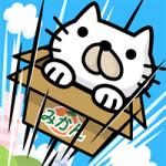 箱ねこジャンピング_R
