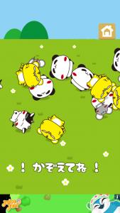 パンダのたぷたぷ_9