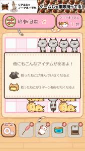 ねこずらし_8