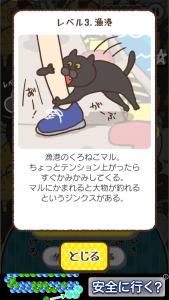 100ねこ!!_16