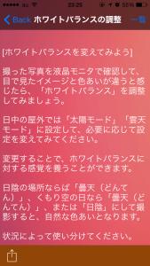 コスモス撮影_4