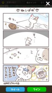 ポコねこ_9