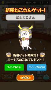 ポコねこ_7