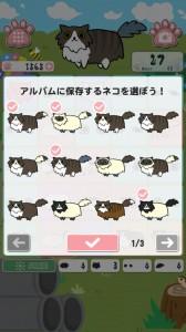 [スクショ]ネコ選択
